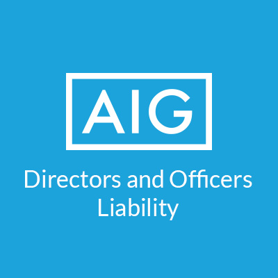 AIG Directors and Officers Liability